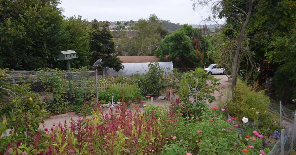 Organic farm owner hopes voters will read up on Prop. 37