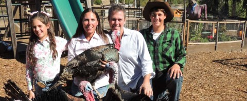 Encinitas family raises turkeys, awareness on sustainable foods