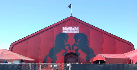 Valitar's big red tent is going once, going twice …
