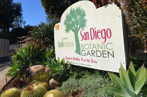 Potential land gift 'once-in-a-lifetime-opportunity' for Botanic Garden