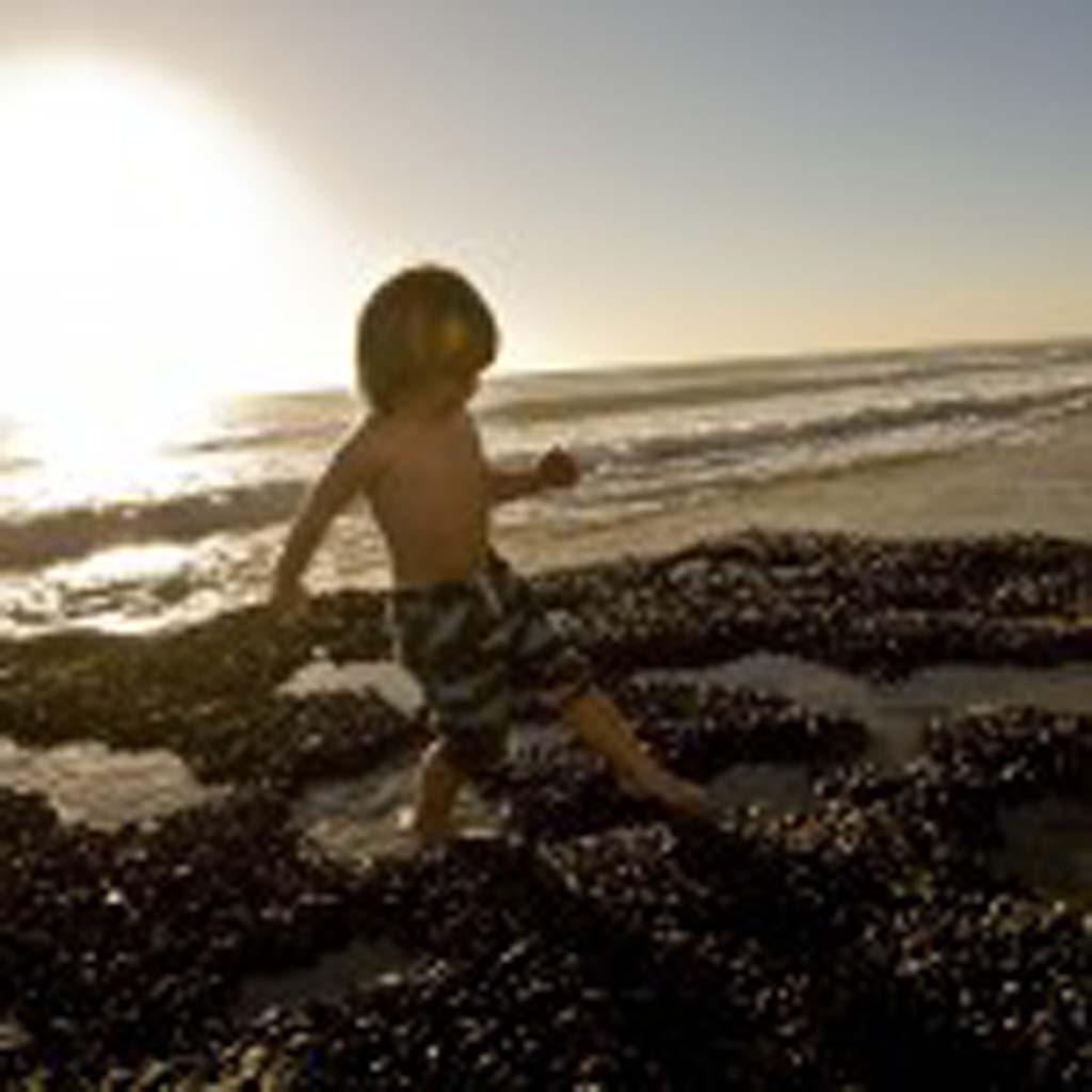 2 1/2 year old Carlsbad resident Stephen Messrah carefully navigates his way through the tide pools at Swami's beach. Photo by Daniel Knighton