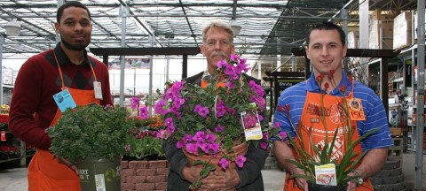 Garden friendly plant fairs  looking to change the landscape