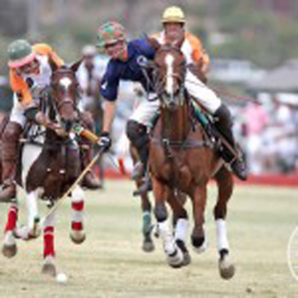 Rancho Santa Fe resident Harrison Samaniego was chosen as one of eight members from around the nation to play with Team USPA. Courtesy photos