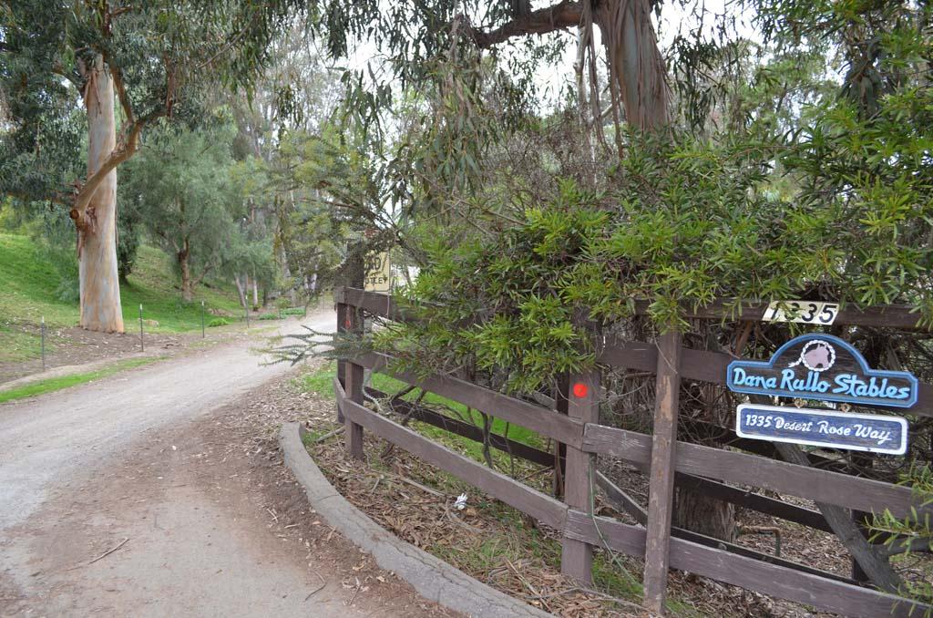 Council approves 'Desert Rose' development