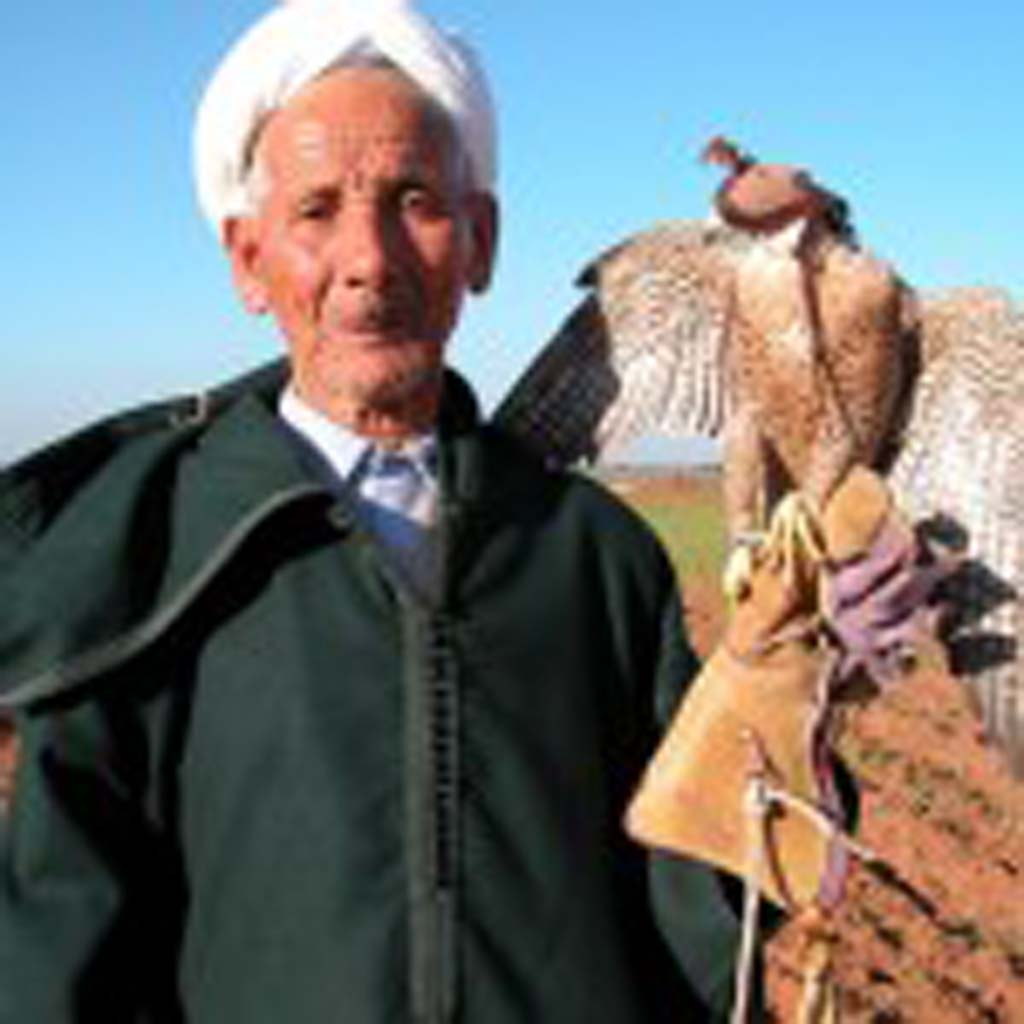 Kitty and Owen Morse met Abdallah, a Kwacem elder and falconer, on a trip with friends to the Moroccan countryside. The Kwacem tribe are the only Moroccans allowed to capture and train falcons. [Photo by Owen Morse]