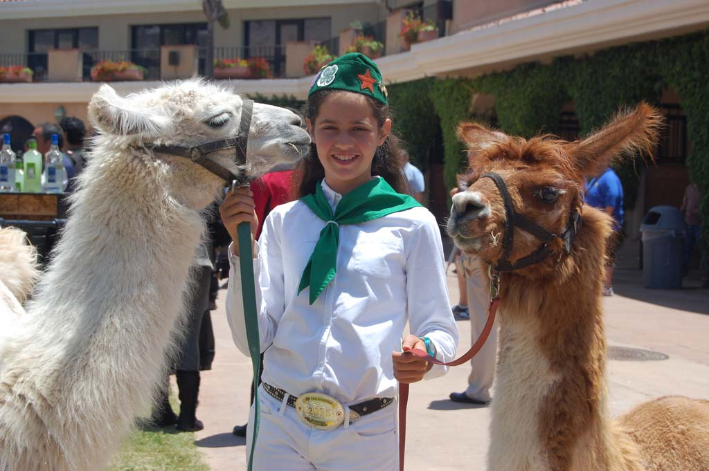 Encinitas resident and 4-H member Sissy Sugarman nearly gets a kiss from Angel, while Cuddles checks out some passers-by. Both 2-year-old llamas will be at the fair so stop by to pet their backs, which Sissy says they love. Photo by Bianca Kaplanek