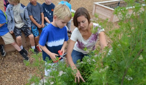 Community helps garden grow