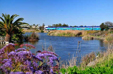 SANDAG will consider alternatives for Buena Vista Lagoon enhancement