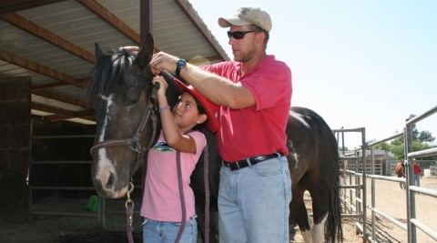 Horse therapy program grows to include instruction