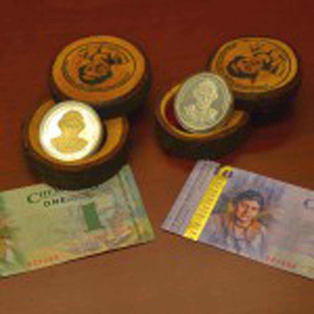 "Chemainus Dollars, ""the official currency of Chemainus,"" is accepted by many of the town's merchants and helps keep 80 cents of every dollar in the community. Each of the seven denominations features Emily Carr, Canada's most famous artist, on the face of the bill. The reverse sides feature some of the 40-plus murals that grace the town's buildings."