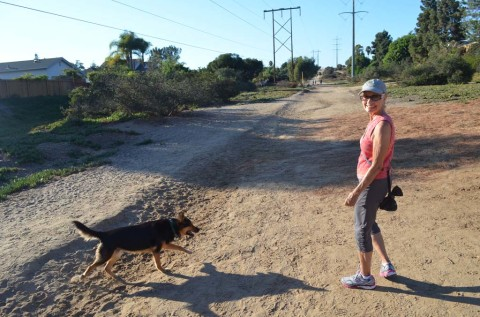 Residents say self-policing is answer to dog trail dispute