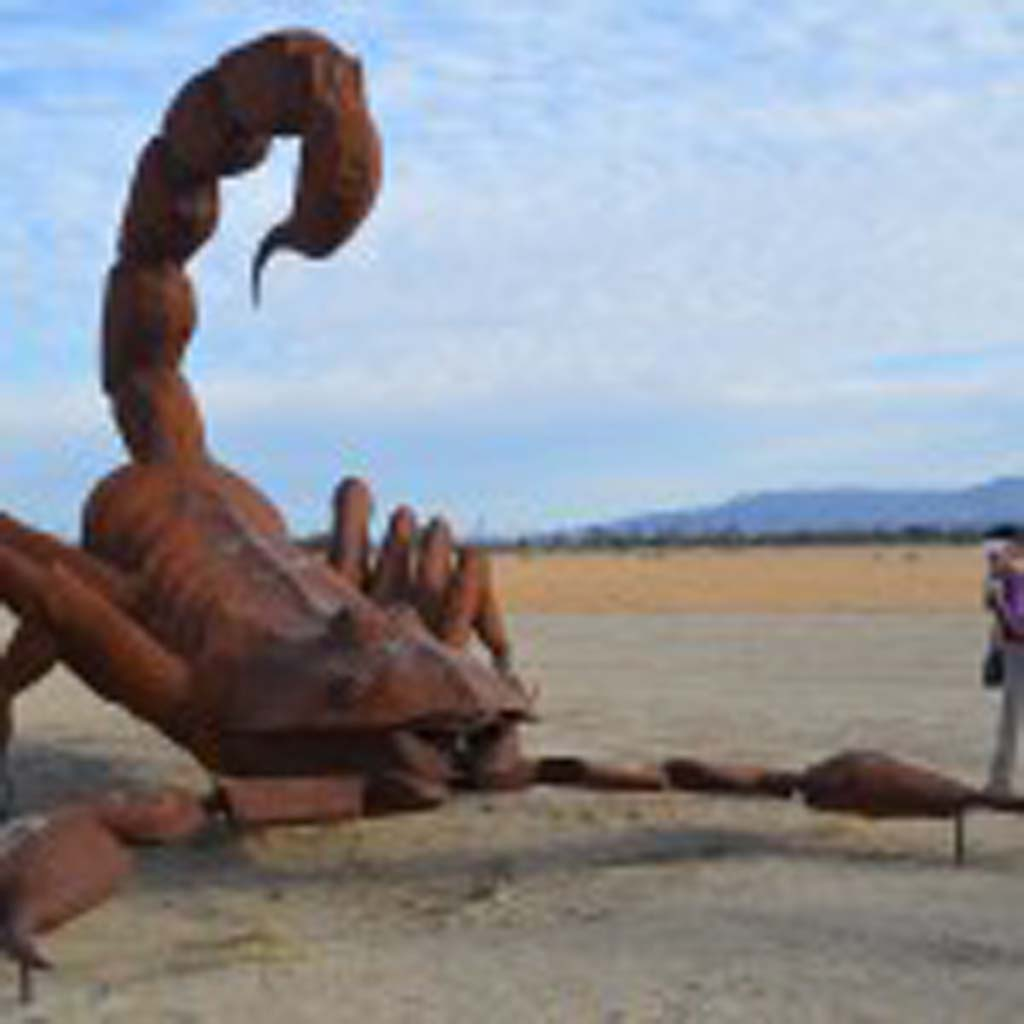 A giant scorpion stands ready to pounce in the desert near Borrego Springs. It is one of 131 sculptures created by artist Ricardo Breceda. Although there has been some unfavorable criticism of the giant outdoor art gallery, visitors who come from around give them mostly positive reviews.
