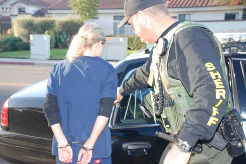 Warrant sweep nabs 11 in North County