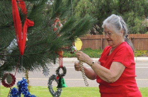 'Little tree' brings big joy to the holidays