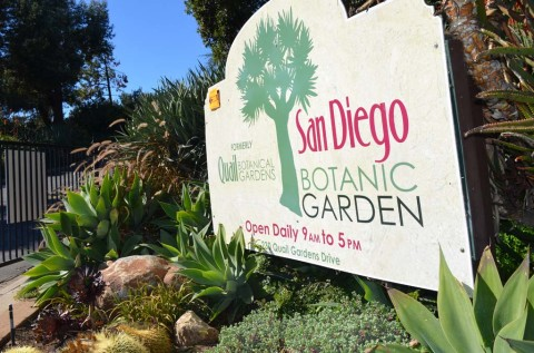 Removal of Botanic Garden members' voting rights approved