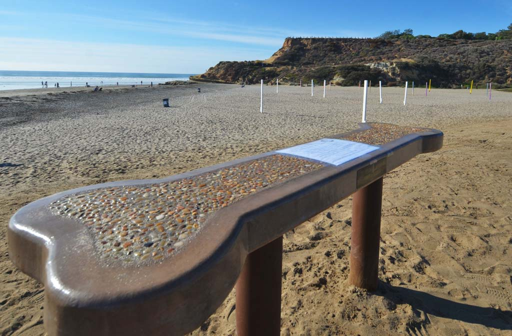 Nancarrow bench removed from Dog Beach