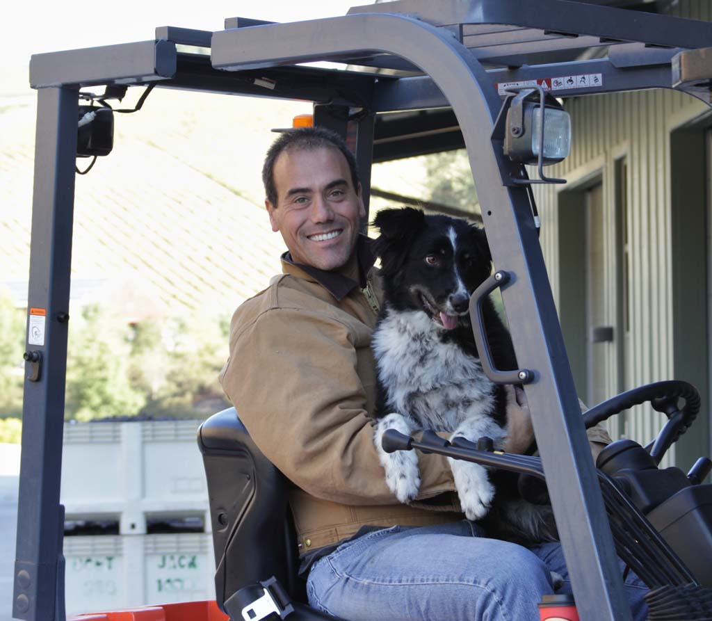 Niner Winemaker Patrick Muran and friend supervise the 2013 harvest at their Paso Robles vineyard. Photo courtesy of Niner
