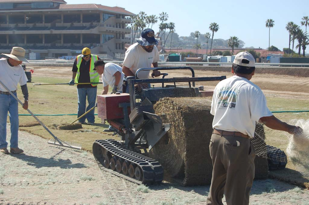 New turf course finally takes root