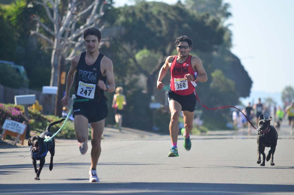 The final heat of The Encinitas Mile allowed dogs and their owners to race. Photo by Tony Cagala