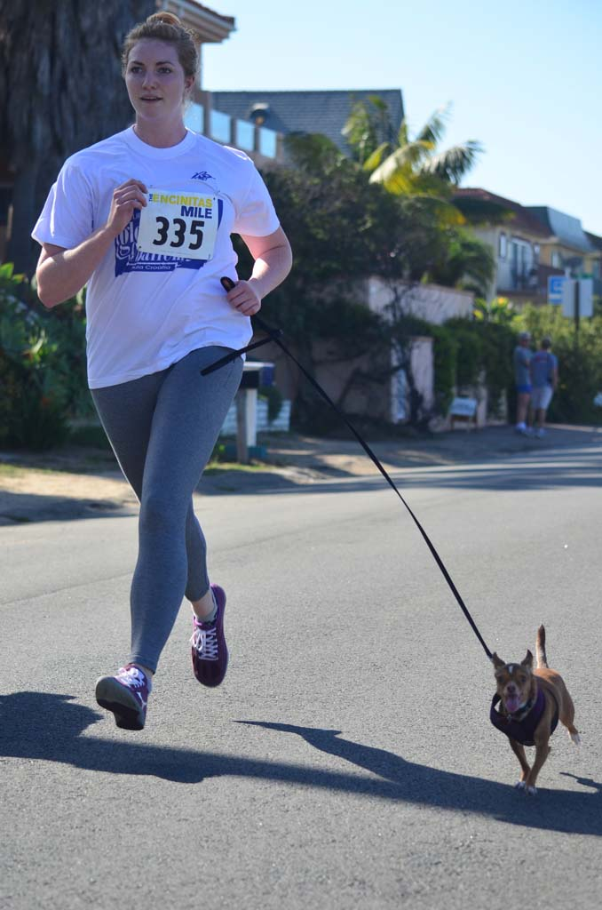 Dogs and their owners run down Vulcan Avenue during Sunday's The Encinitas Mile. Photo by Tony Cagala