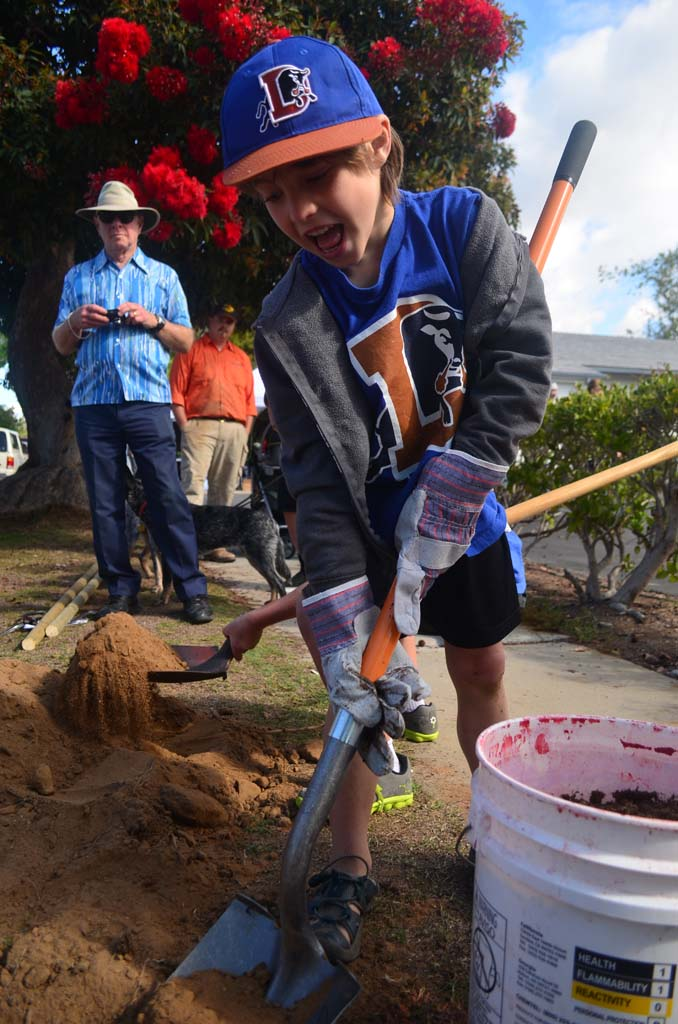 Trevor Darlington, 7, readied to shovel some fill dirt onto one of the planted trees. Photo by Tony Cagala