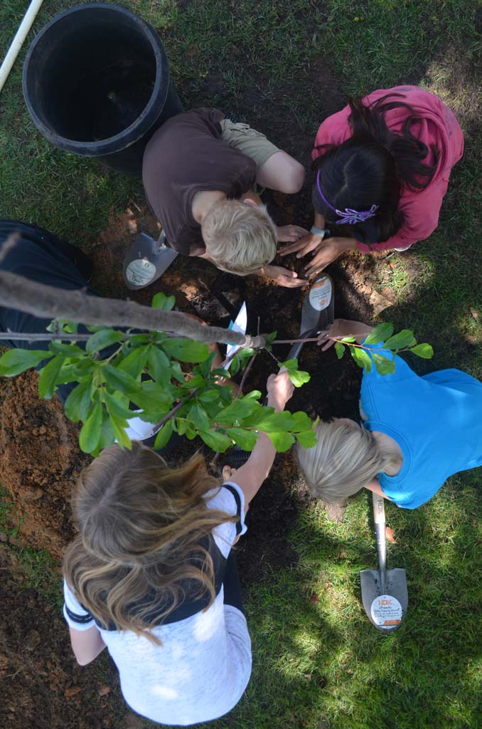 Community digs in for Arbor Day celebration