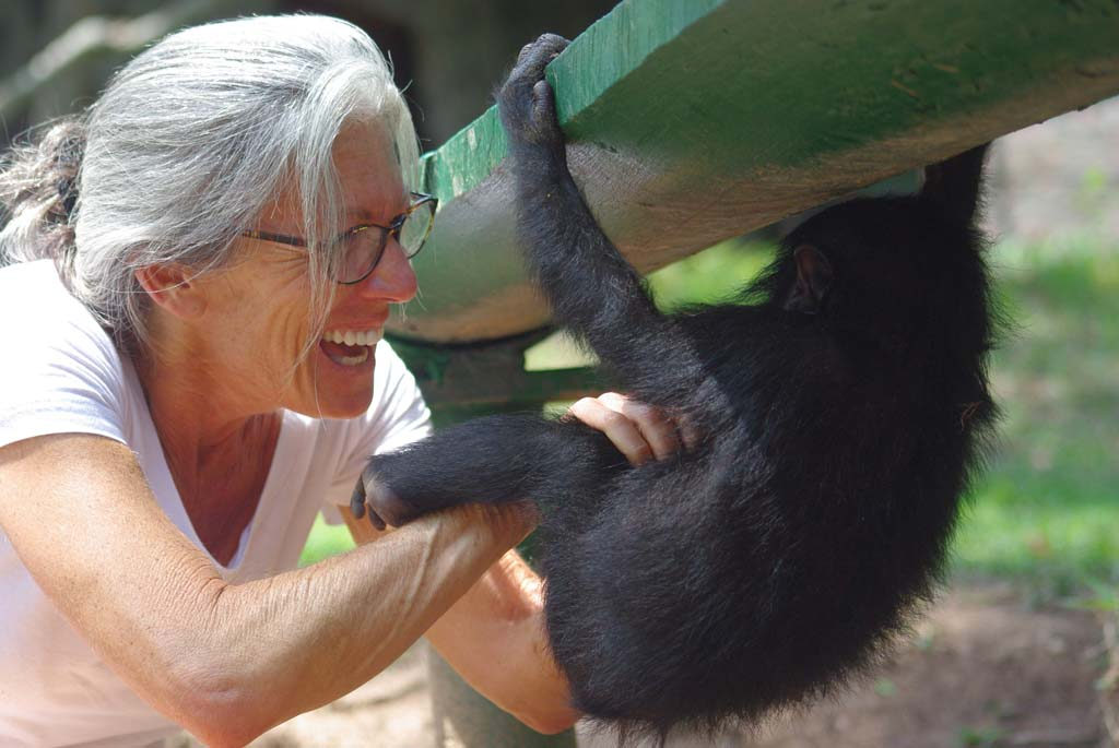 Debbie Sandler, a Solana Beach resident, has been giving talks at local libraries about her time and studies with bonobos, the fourth great ape. Photo courtesy of Debbie Sandler
