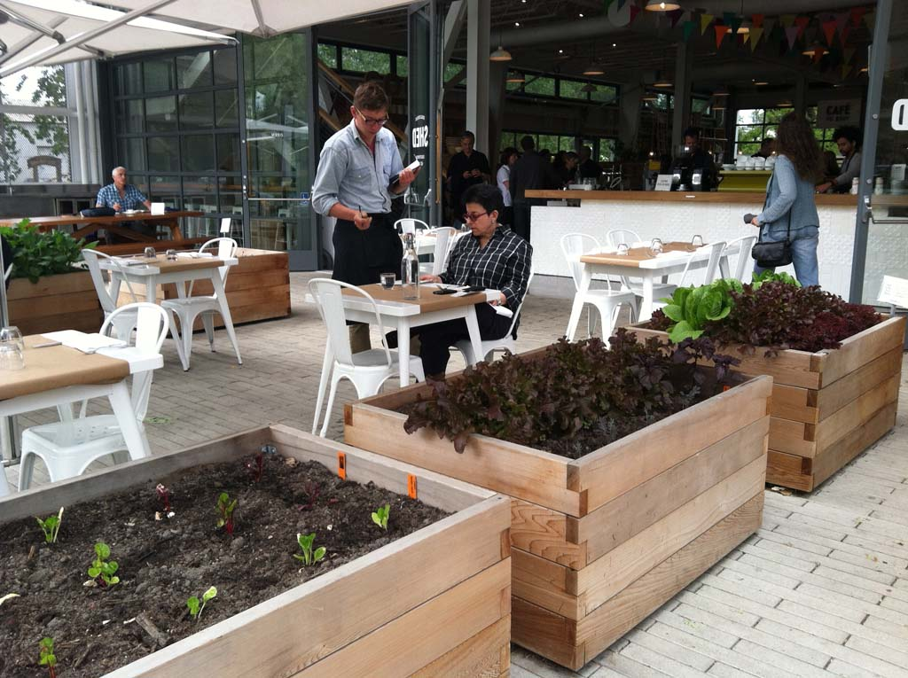 It's not uncommon for restaurants to have their own gardens nearby where they grow vegetables and herbs. These raised planters are just outside Shed restaurant in downtown Healdsburg. Photo by E'Louise Ondash