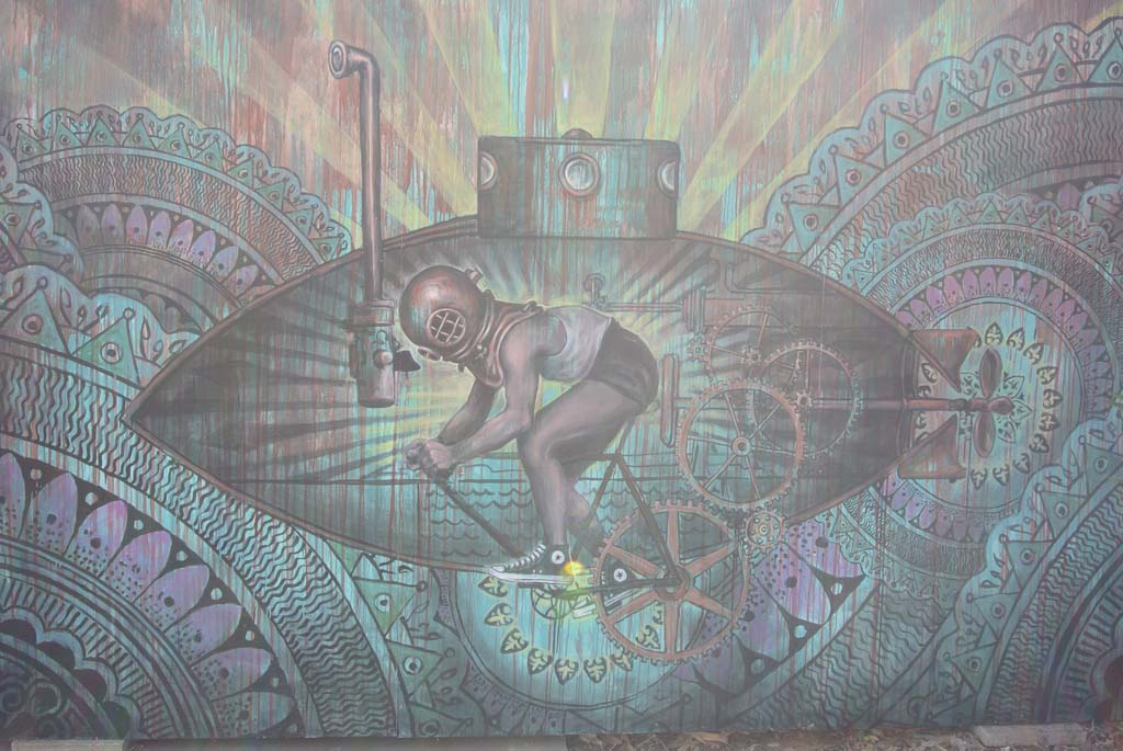 Mural located in Leucadia. [artist unknown] Photo by Yeshe Salz