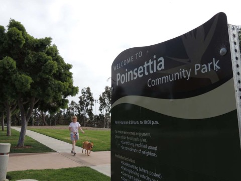 Residents call for Poinsettia dog park