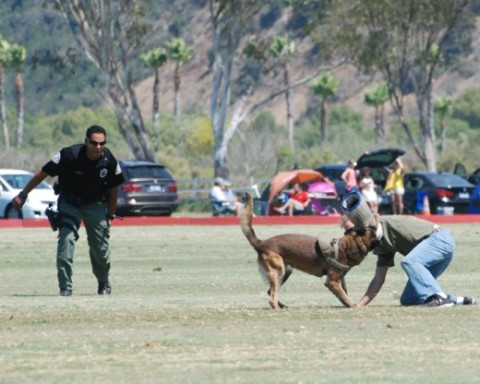 San Diego Polo Club celebrates 'First Responders Day'