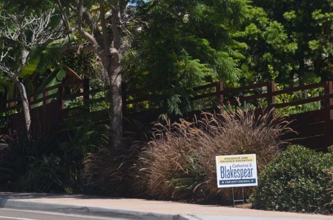 Early sightings of campaign signs stirring up confusion