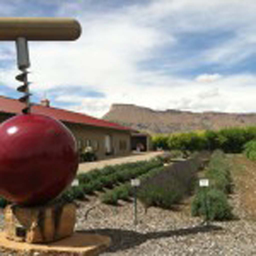 """This sculpture by Colterris Winery owner Scott High was titled """"Screwball"""" by his children. Colterris is a relative newcomer to the Palisade area. The High family harvested their first crop of grapes in 2008 and opened their tasting room in 2011. They also grow Palisade peaches in their orchard which the Obama family visited in 2009, at the request of Michelle Obama who remembered eating the peaches as a child."""