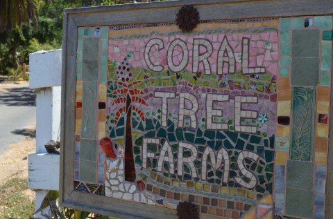 Split decision made over Coral Tree Farm
