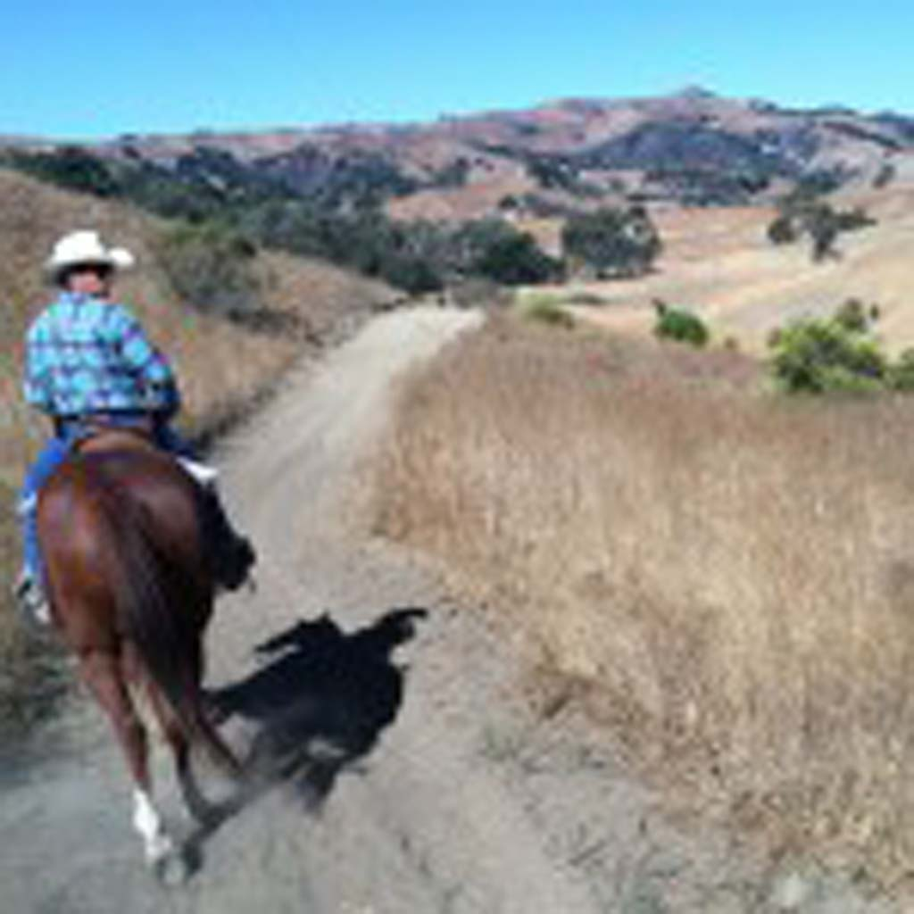 Alisal Guest Ranch wrangler and trail guide extraordinaire, Dustin Mackie has been riding horses since age 4. In 2006, he spent months of rehabilitation to recover from a severe head injury from a Motocross accident. Today Mackie works with horses and guests alike with great patience. He leads riders through the part of Santa Ynez Valley that belongs to the ranch. There is little he doesn't know about the flora and fauna of the region. (Photo by E'Louise Ondash)