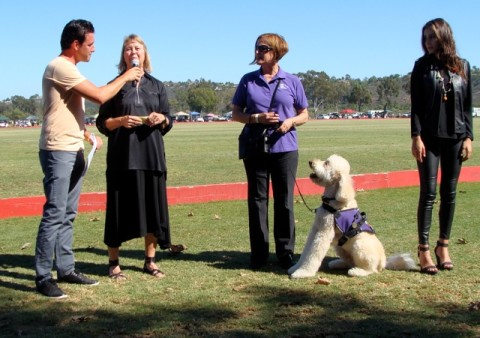 Inagural Hero Service Dog awards given out