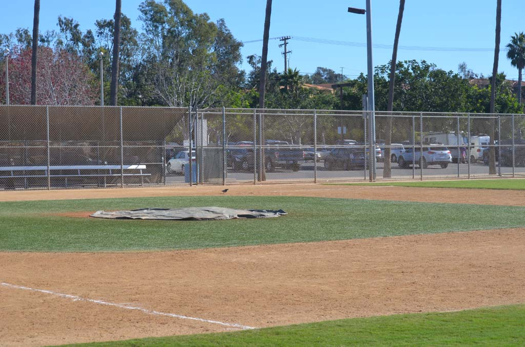 A contract clause between the city and the Magdalena Ecke YMCA might have an impact on the ball fields that were created in 1960. Photo by Tony Cagala