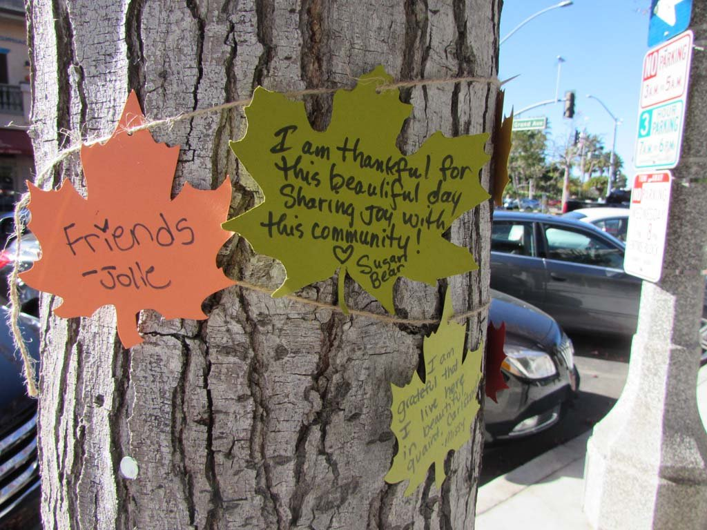 People are writing messages about what they're thankful for on paper leaves and attaching them to the giving tree in Carlsbad. Photo by Ellen Wright