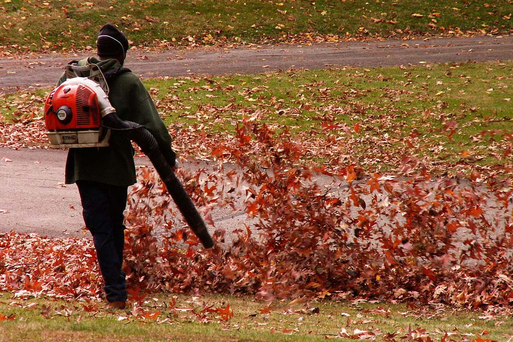 Council could toughen restrictions on leaf blowers