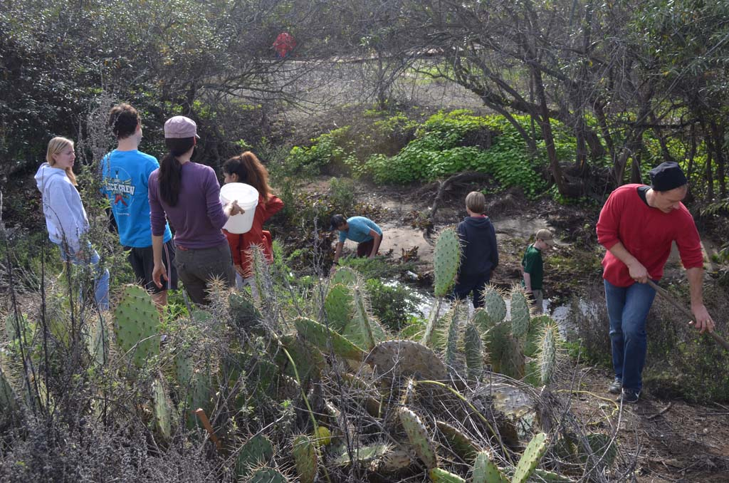Volunteers from San Dieguito Academy, Boy Scout Troop 777 and members of the Cottonwood Creek Conservancy help to plant native shrubs on the hillsides of Cottonwood Creek near Moonlight Beach. Photo by Tony Cagala