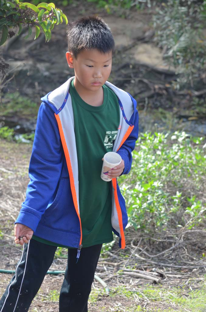 Andy Uyu of Boy Scout Troop 777 is one of the volunteers to help plant native shrubs and broadcast native seeds at Cottonwood Creek on Saturday. Photo by Tony Cagala