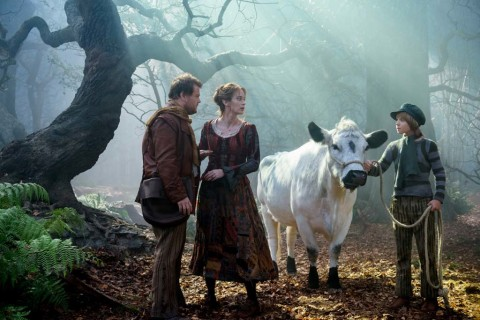 Film review: These woods are lovely, vibrant and musical