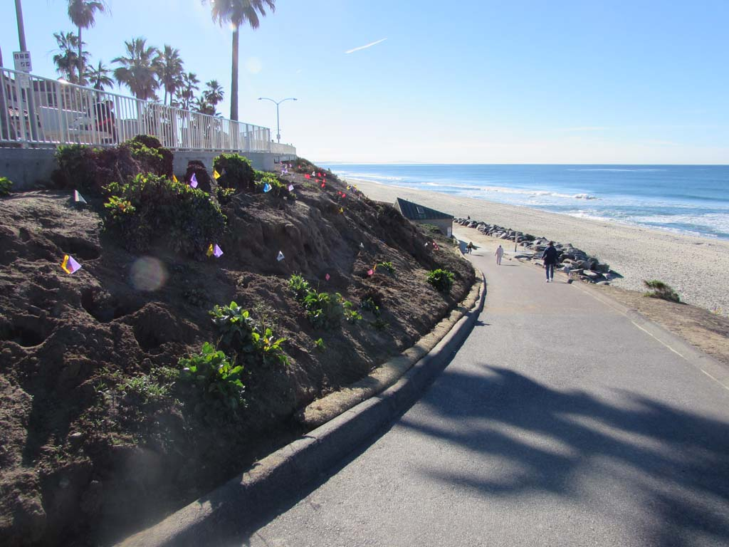 Carlsbad residents give city high marks