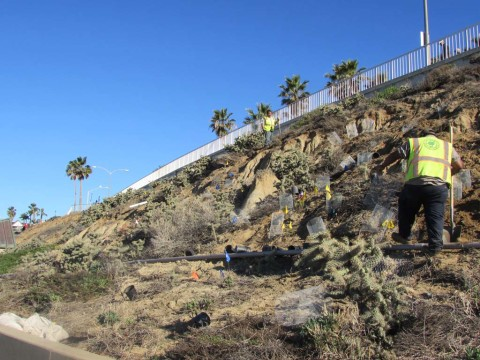 City to enter into beach maintenance negotiations with state