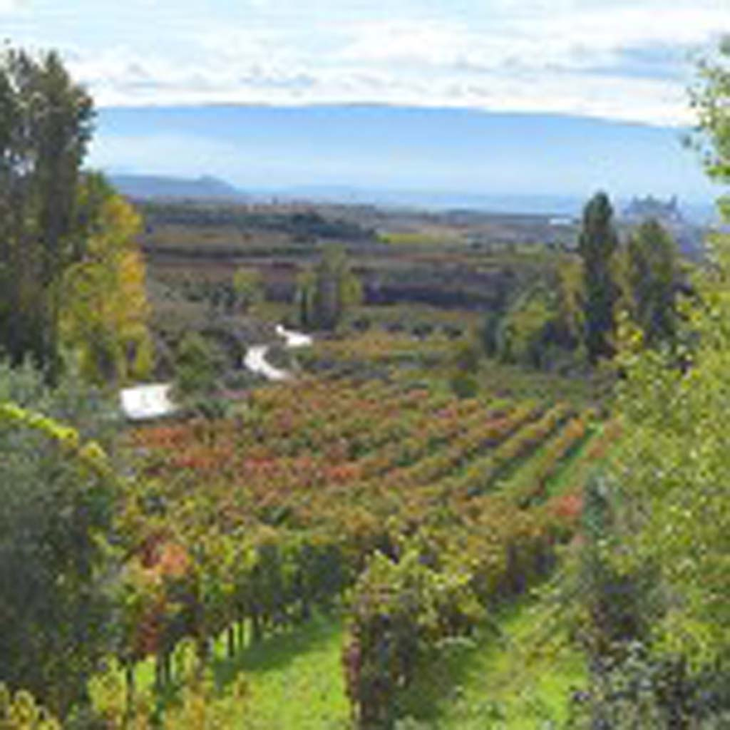 The countryside of one of Spain's top wine countries, the Ribera De Duero, in the northwest, near Portugal is on the itinerary of San Diego State's College of Extended Studies inaugural Wine Education Abroad. Photo courtesy San Diego State University