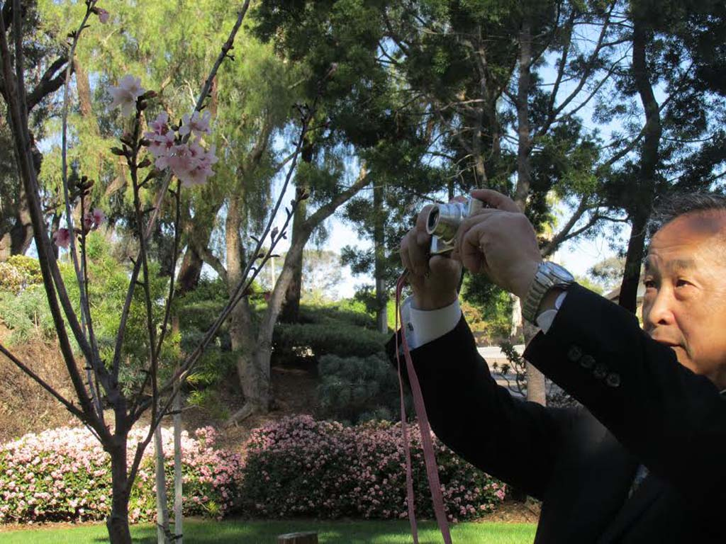 Daijii Mizota photographs the Cherry Trees he helped plant last year outside of City Hall. Mizota spent another week in Carlsbad with two high school students from Futtsu, Japan as part of the Carlsbad Sister City Ambassador program. Courtesy photo