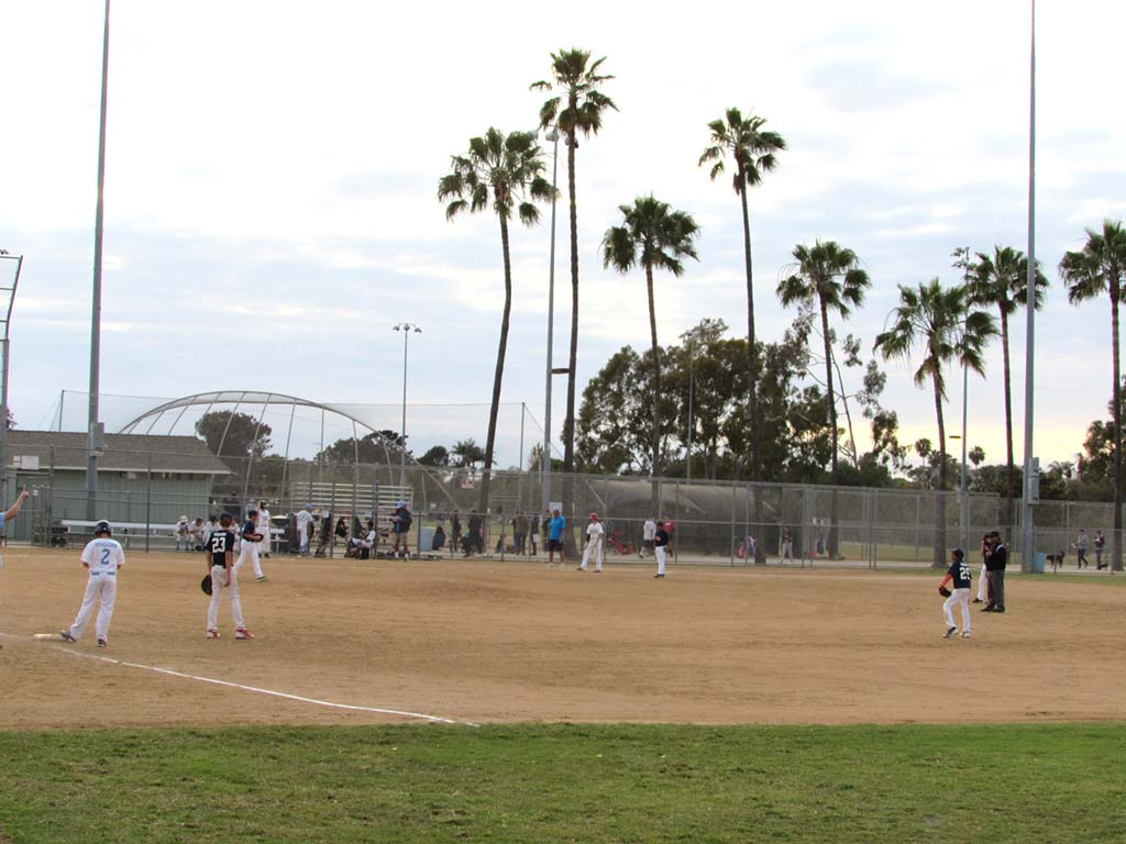 YMCA plans mean Little League can stay
