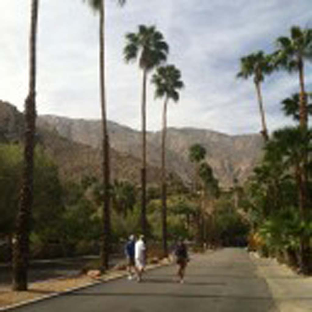 West Chino Drive in the Old Las Palmas neighborhood in Palm Springs is a favorite of walkers. The house on the hill at the end of the street was built in the 1980s for country-western singer Kenny Rogers, and was later owned by Barbra Streisand. (E'Louise Ondash)