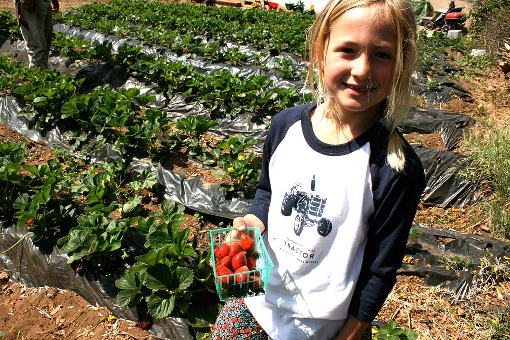 Agritourism is taking root in Oceanside