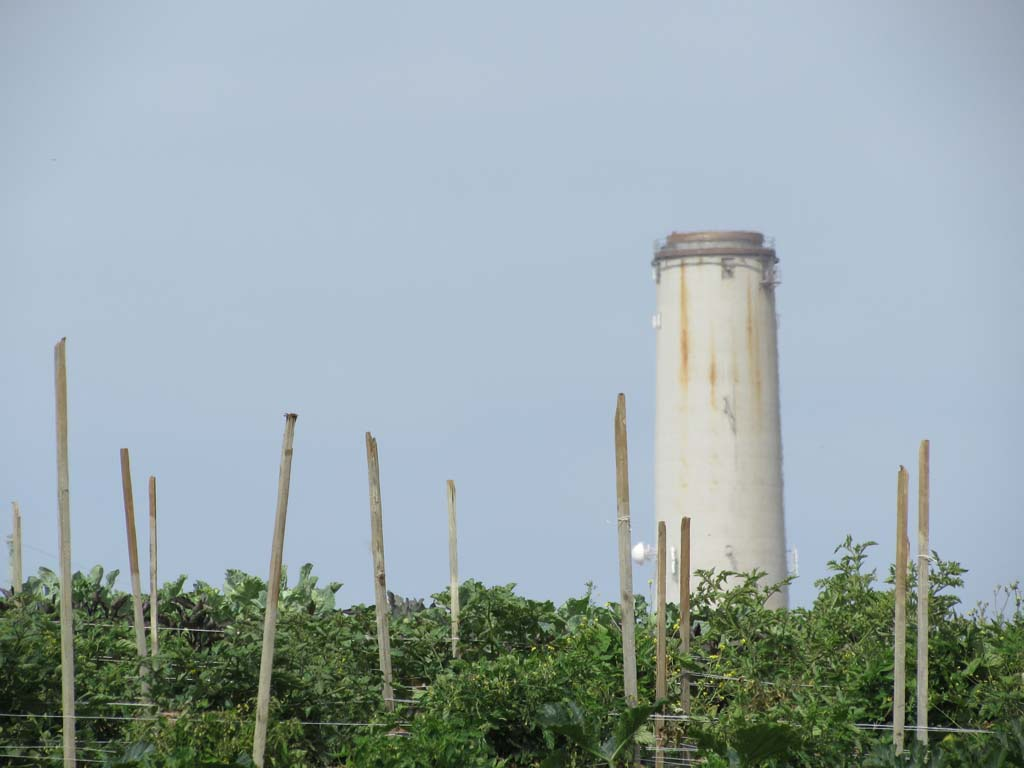 The 400-foot smokestack at the Encina Power Station has been an unpopular city landmark since the '50s. Here, it looms over a hill in the strawberry fields. Photo by Ellen Wright